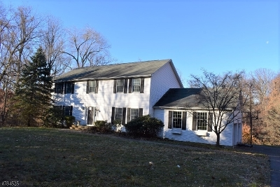 Bernards Twp. Single Family Home For Sale: 27 Mount Airy Rd