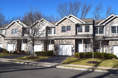 Parsippany Condo/Townhouse For Sale: 233 Raymound Blvd