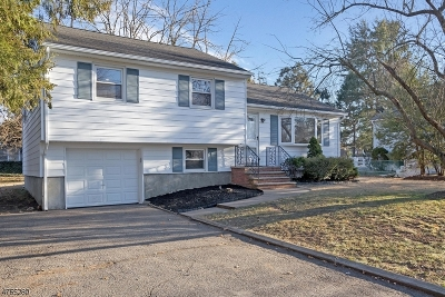 East Hanover Twp. Single Family Home For Sale: 525 Ridgedale Ave