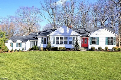 WATCHUNG Single Family Home For Sale: 97 Anderson Rd