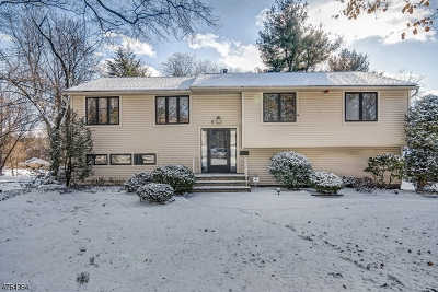 Livingston Twp. Single Family Home For Sale: 8 Alpine Way