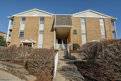 Hanover Twp. Condo/Townhouse For Sale: 201 Vista Dr