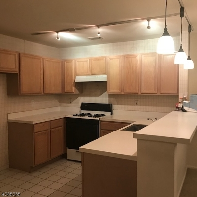 Roxbury Twp. Condo/Townhouse For Sale: 39 Loch Ln