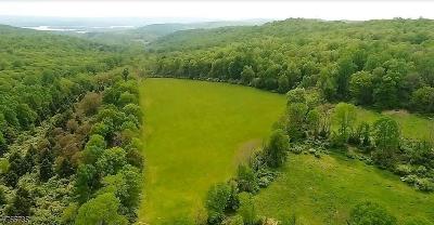 Lebanon Twp. Single Family Home For Sale: 204 Buffalo Hollow Rd
