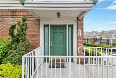 Belleville Twp. Condo/Townhouse For Sale: 207 Olivio Dr