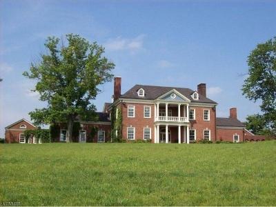 Bedminster Twp. Single Family Home For Sale: 355 Rattlesnake Bridge Rd