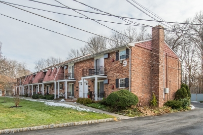 Morristown Town NJ Condo/Townhouse For Sale: $265,000