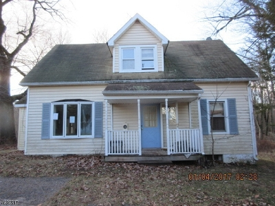 Delaware Twp. Single Family Home For Sale: 467 County Road 579