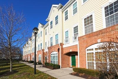 Belleville Twp. Condo/Townhouse For Sale: 1204 Hamilton St #1204