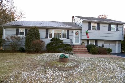 East Hanover Twp. Single Family Home For Sale: 11 Cedar St