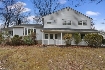Roxbury Twp. Single Family Home For Sale: 23 Toby Dr