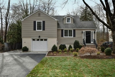 Florham Park Boro Single Family Home For Sale: 127 Beechwood Rd