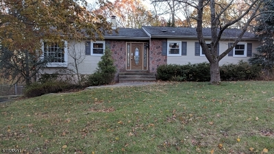 Mount Olive Twp. Single Family Home For Sale: 25 Louis Dr