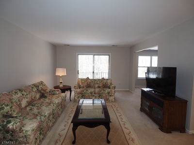 East Hanover Twp. Condo/Townhouse For Sale: 14 Jennifer Dr