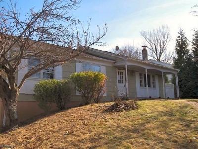 Glen Gardner Boro, Hampton Boro Single Family Home For Sale: 55 Blossom Rd