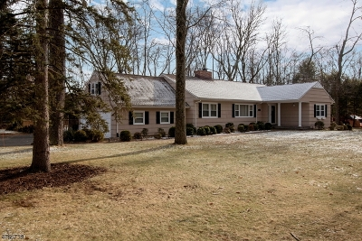 Parsippany-Troy Hills Twp. Single Family Home For Sale: 3 Windsor Rd