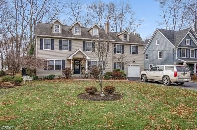 Scotch Plains Twp. Single Family Home For Sale: 346 Acacia Rd