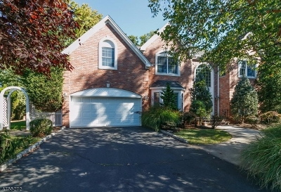 Westfield Town NJ Single Family Home For Sale: $1,280,000