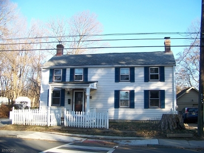 Clinton Town Single Family Home For Sale: 60 Halstead St