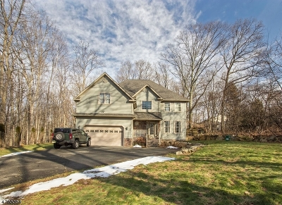 Mount Olive Twp. Single Family Home For Sale: 412 Drakestown Rd
