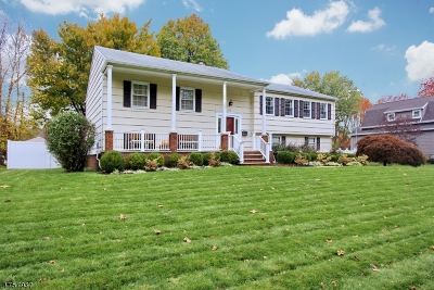 Westfield Town NJ Single Family Home For Sale: $729,000