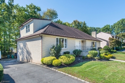 Springfield Twp. Single Family Home For Sale: 6 Winfield Way