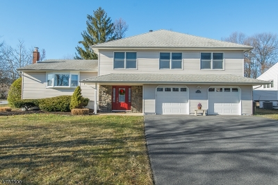 Parsippany-Troy Hills Twp. Single Family Home For Sale: 2 Colony Ct
