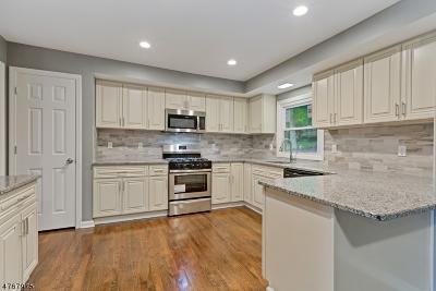 Green Brook Twp. NJ Single Family Home For Sale: $559,000
