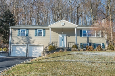 Randolph Twp. Single Family Home For Sale: 37 Radtke Rd