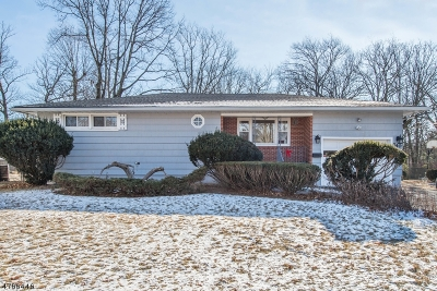 West Orange Twp. Single Family Home For Sale: 340 Northfield Ave