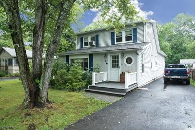 Warren Twp. Single Family Home For Sale: 12 Fairfield Ave