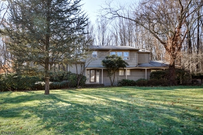 Scotch Plains Twp. Single Family Home For Sale: 1974 Winding Brook Way