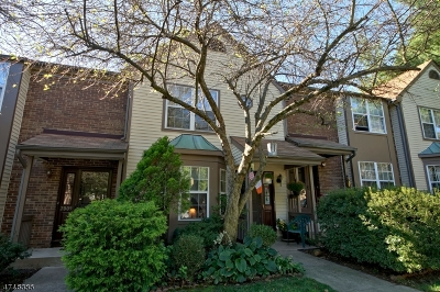 South Brunswick Twp. Condo/Townhouse For Sale: 2008 Sandlewood Ct