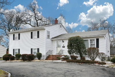 Livingston Twp. Single Family Home For Sale: 9 Page Pl