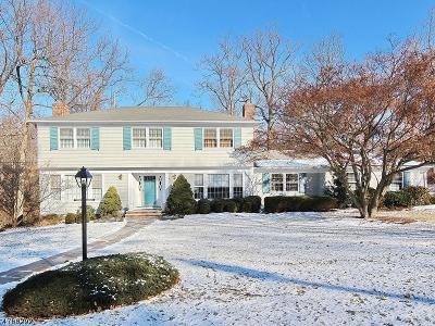 Mountainside Boro Single Family Home For Sale: 1371 Chapel Hl