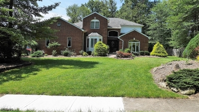 Denville Twp. Single Family Home For Sale: 63 Mabro Dr