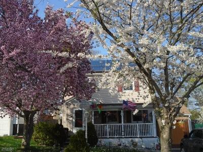 Belleville Twp. Single Family Home For Sale: 110 Birchwood Dr
