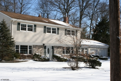 Parsippany-Troy Hills Twp. Single Family Home For Sale: 17 Druid Hill Dr