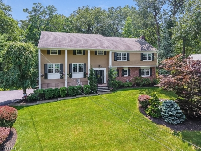 Springfield Twp. Single Family Home For Sale: 22 Green Hill Rd
