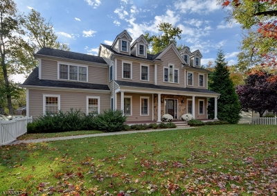 Westfield Town NJ Single Family Home For Sale: $1,249,500
