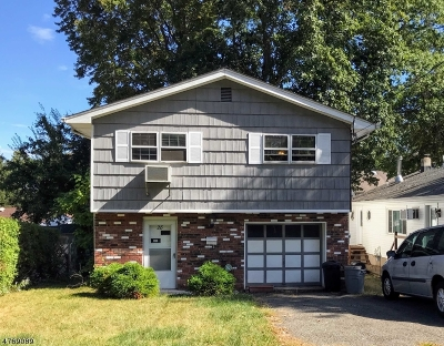 Parsippany-Troy Hills Twp. Single Family Home For Sale: 28 Dacotah Ave