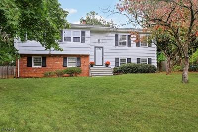 Bernards Twp. Single Family Home For Sale: 10 Courter St
