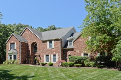 Sparta Twp. Single Family Home For Sale: 4 Natale Dr