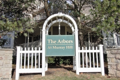 New Providence Boro Condo/Townhouse For Sale: 10 The Arbors #10
