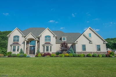 Denville Twp. Single Family Home For Sale: 3 Brown Ter