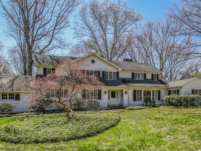 Harding Twp. Single Family Home For Sale: 21 Sand Spring Rd
