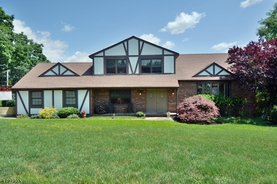 Hawthorne Boro Single Family Home For Sale: 119 Old Orchard Dr