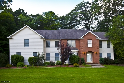 Sparta Twp. Single Family Home For Sale: 46 Angelo Dr