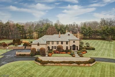 Harding Twp. Single Family Home For Sale: 2 Morgan Dr