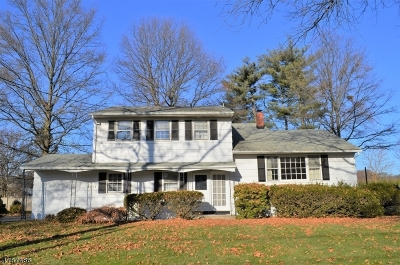 Scotch Plains Twp. Single Family Home For Sale: 2233 Old Farm Rd